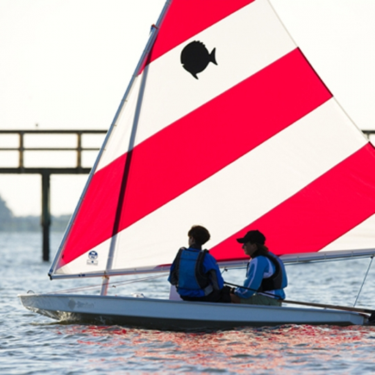 sunfish sailboat classic the dinghy shop
